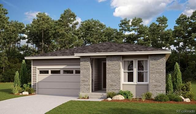 9107 Fraser River Street, Littleton, CO 80125 (#8897177) :: West + Main Homes