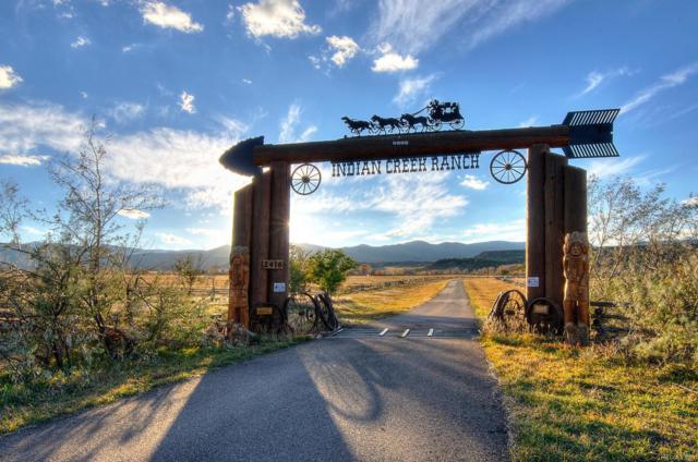 2416 Indian Creek Road, La Veta, CO 81055 (MLS #8898173) :: 8z Real Estate