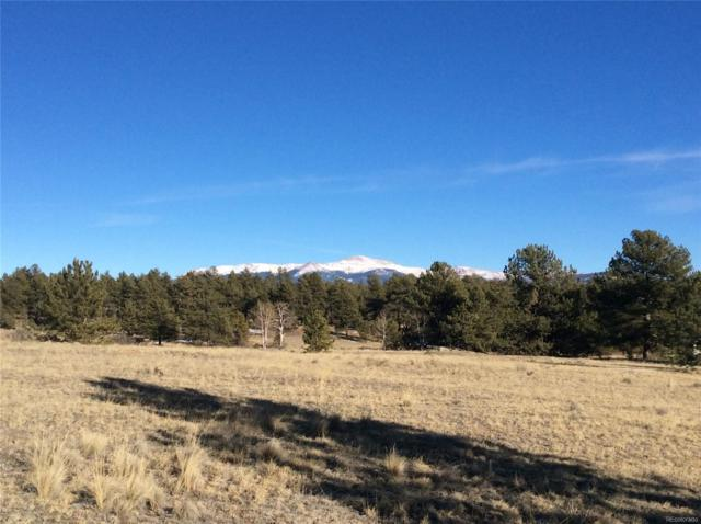 Doe Valley Road, Guffey, CO 80820 (#8899537) :: 5281 Exclusive Homes Realty