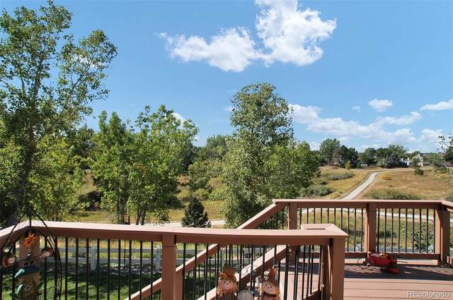 11441 Switzer Park Place, Parker, CO 80138 (#8902218) :: The DeGrood Team