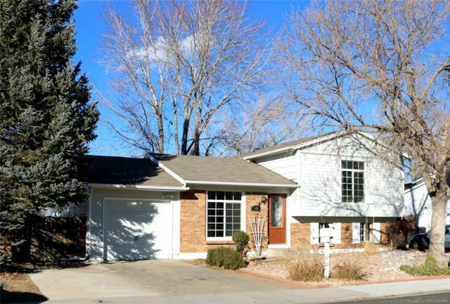 9461 W 93rd Avenue, Westminster, CO 80021 (#8904600) :: The Griffith Home Team