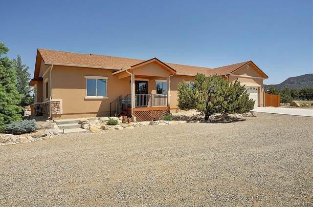 11800 Las Colinas Drive, Salida, CO 81201 (MLS #8905118) :: Bliss Realty Group