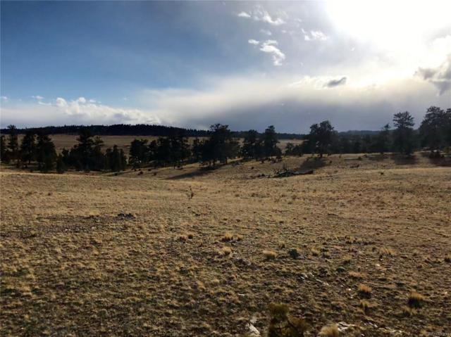 2305 Goldenburg Canyon Road, Hartsel, CO 80449 (#8907360) :: The DeGrood Team