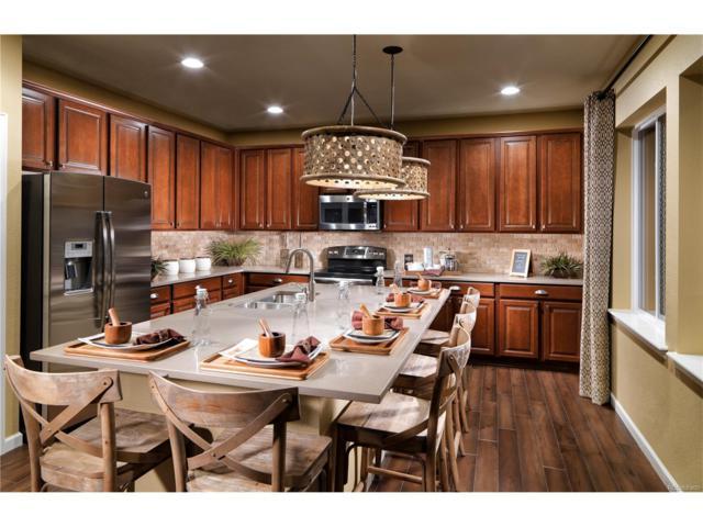 981 Mcmurdo Circle, Castle Rock, CO 80108 (MLS #8908311) :: 8z Real Estate
