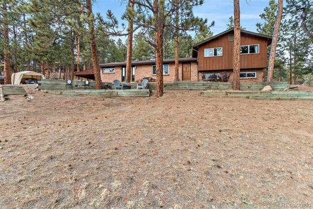 28613 Meadow Drive, Evergreen, CO 80439 (#8910156) :: The Gilbert Group