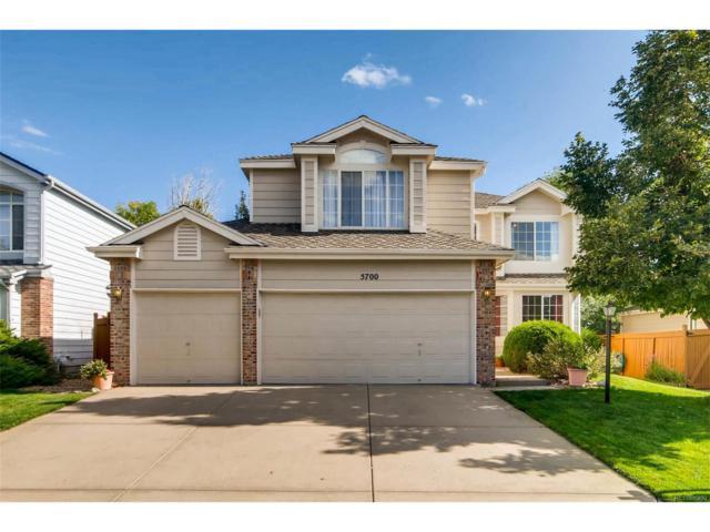 5700 S Jasper Way, Centennial, CO 80015 (MLS #8910767) :: 8z Real Estate