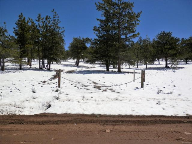 1872 Wagon Wheel Road, Hartsel, CO 80449 (MLS #8912665) :: 8z Real Estate