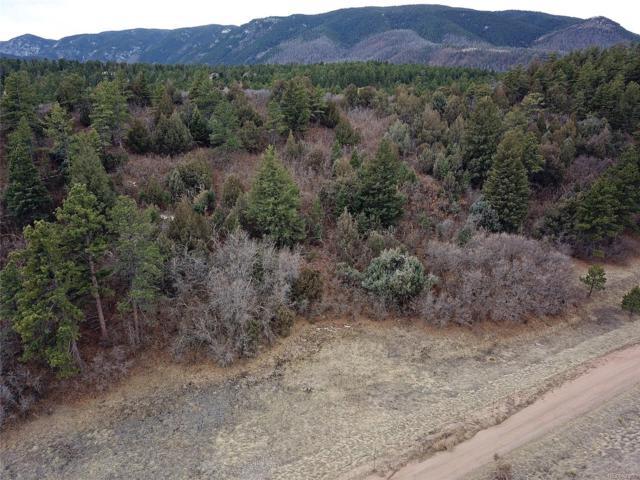 4438 Comanche Drive, Larkspur, CO 80118 (MLS #8912865) :: 8z Real Estate