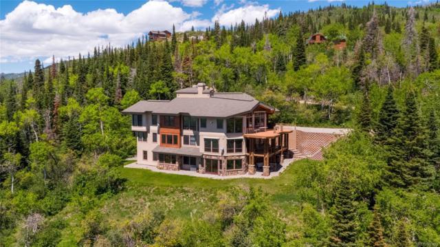 31165 Star Ridge Road, Steamboat Springs, CO 80487 (MLS #8915142) :: 8z Real Estate