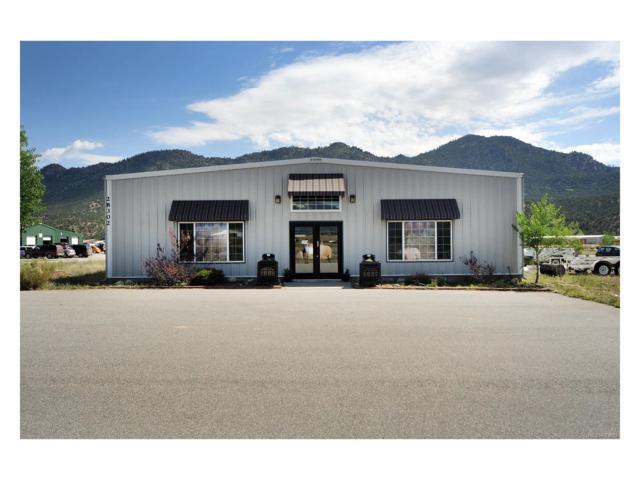 28302 County Road 317, Buena Vista, CO 81211 (MLS #8915227) :: 8z Real Estate