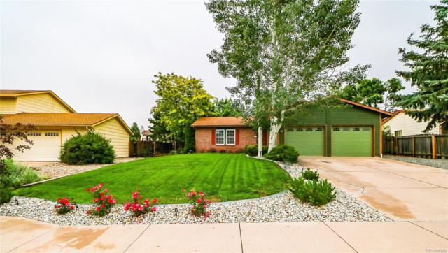 3020 Zephyr Drive, Colorado Springs, CO 80920 (#8915813) :: The Heyl Group at Keller Williams