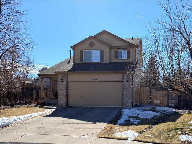 20136 E Williamette Lane, Centennial, CO 80015 (#8916839) :: HomeSmart