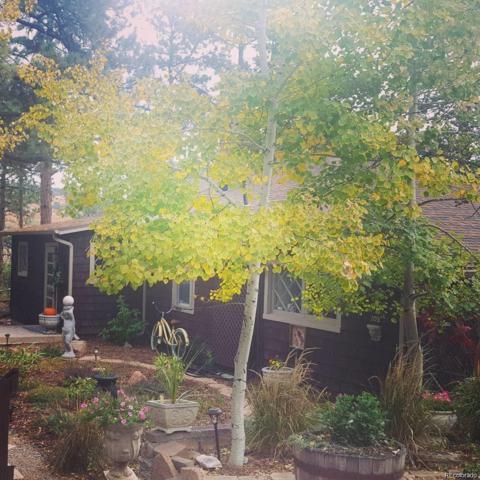 105 Pueblo Court, Palmer Lake, CO 80133 (#8917119) :: Harling Real Estate