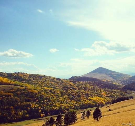 000 Rhyolite Mountain, Cripple Creek, CO 80813 (#8917863) :: The Brokerage Group