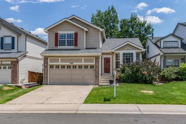 1018 Mulberry Lane, Highlands Ranch, CO 80129 (#8919508) :: The Peak Properties Group