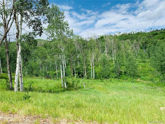 56025 Hannahs Way, Clark, CO 80428 (#8921557) :: Venterra Real Estate LLC