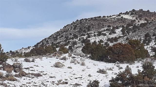 T.B.D. Black Elk Trail, San Luis, CO 81152 (#8925719) :: The Gilbert Group