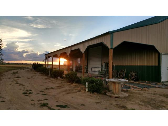 31495 County Road 10, Keenesburg, CO 80643 (MLS #8927571) :: 8z Real Estate