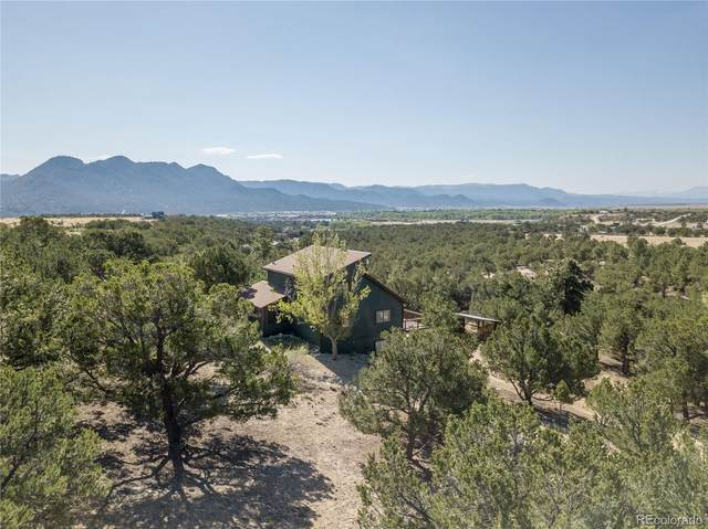 30460 County Road 356, Buena Vista, CO 81211 (#8929800) :: The DeGrood Team