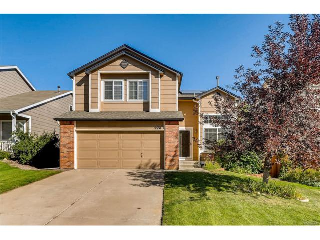 9538 Cove Creek Drive, Highlands Ranch, CO 80129 (#8930632) :: The Sold By Simmons Team