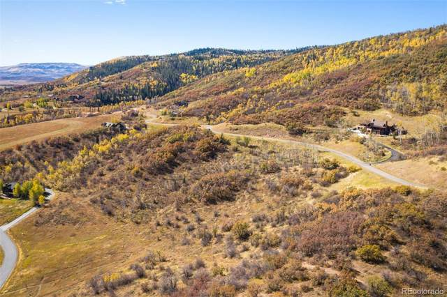 35600 Humble Road, Steamboat Springs, CO 80487 (#8931926) :: The Brokerage Group