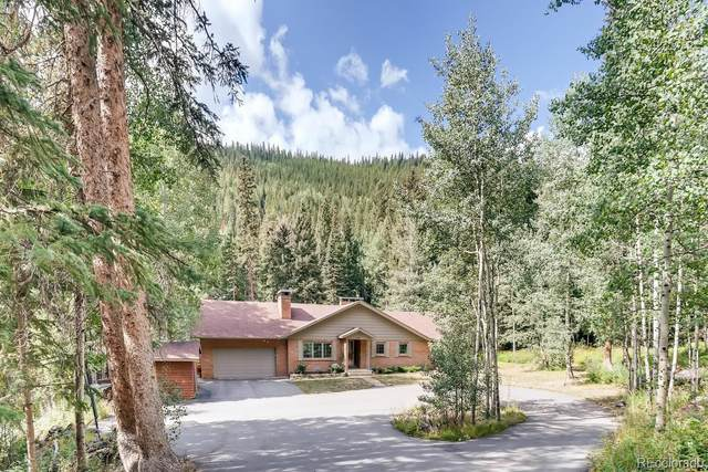 2831 Mill Creek Road, Dumont, CO 80436 (#8932106) :: The DeGrood Team