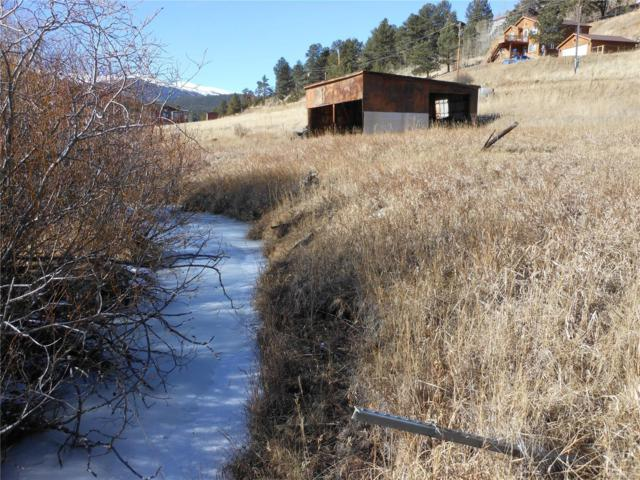 96 AND 118 Wilkins Road, Bailey, CO 80421 (#8932780) :: Sellstate Realty Pros