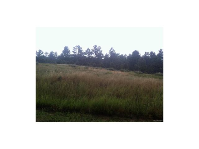 24301 Agate Trail, Deer Trail, CO 80105 (MLS #8936880) :: 8z Real Estate