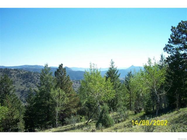 14714 Wetterhorn Peak Trail, Pine, CO 80470 (#8941066) :: The DeGrood Team