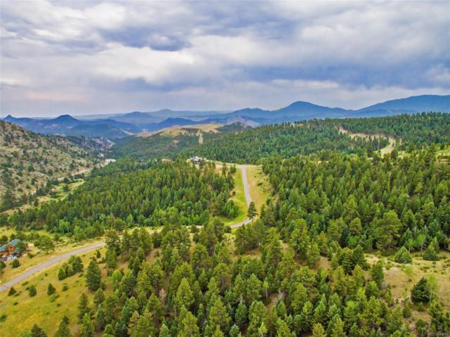14515 Reserve Road, Pine, CO 80470 (MLS #8941946) :: 8z Real Estate