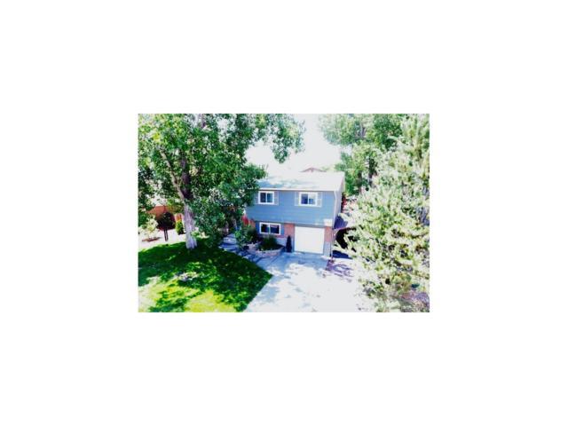 6311 S Jellison Street, Littleton, CO 80123 (MLS #8943731) :: 8z Real Estate