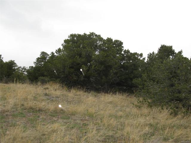 36 Elk Mountain Springs, Saguache, CO 81149 (MLS #8944456) :: 8z Real Estate