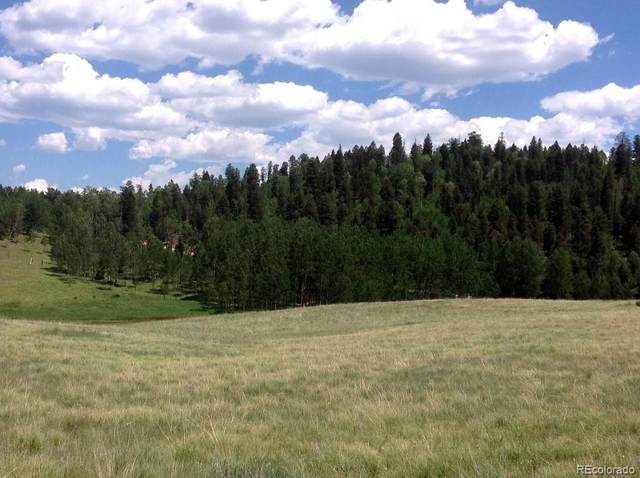 3547 County 100 Road, Lake George, CO 80827 (#8946255) :: The DeGrood Team
