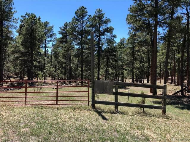 11374 Ridgewood Way, Kiowa, CO 80117 (MLS #8948576) :: 8z Real Estate