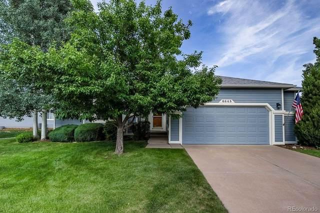 6648 Showhorse Court, Colorado Springs, CO 80922 (#8949989) :: Stephanie Fryncko | Keller Williams Integrity