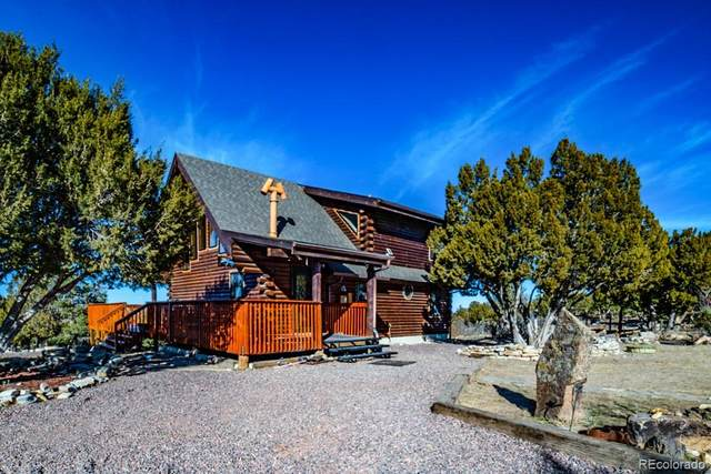 2925 Siloam Road, Pueblo, CO 81005 (#8953502) :: The Colorado Foothills Team | Berkshire Hathaway Elevated Living Real Estate