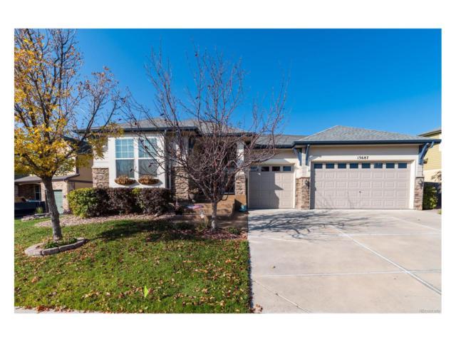 13687 Dexter Street, Thornton, CO 80602 (MLS #8953567) :: 8z Real Estate