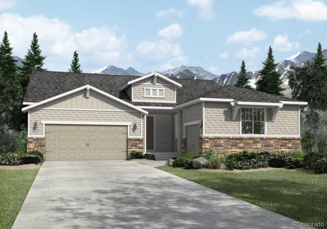42005 Colonial Trail, Elizabeth, CO 80107 (#8954102) :: The DeGrood Team