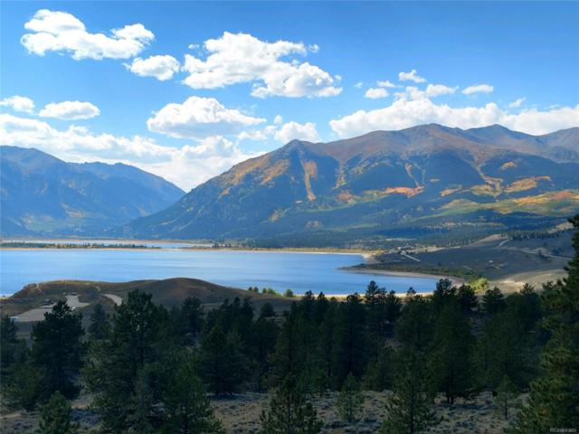 Tract 49 Parcel 1-A E E Hill, Twin Lakes, CO 81251 (MLS #8954313) :: 8z Real Estate