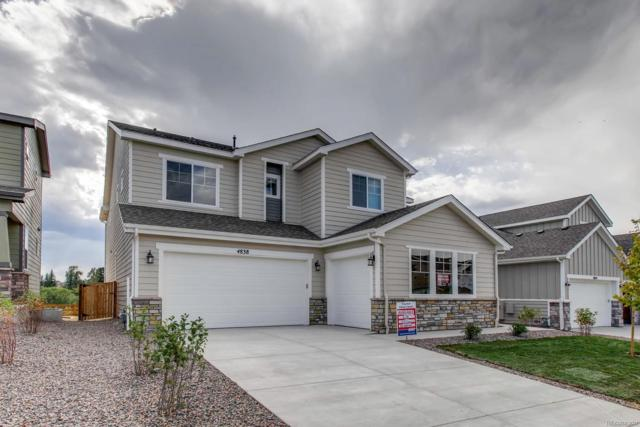 4838 Coulee Trail, Castle Rock, CO 80108 (#8954525) :: Bring Home Denver