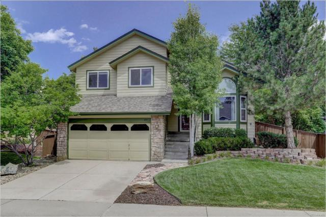 954 Garden Drive, Highlands Ranch, CO 80126 (#8955882) :: The Healey Group