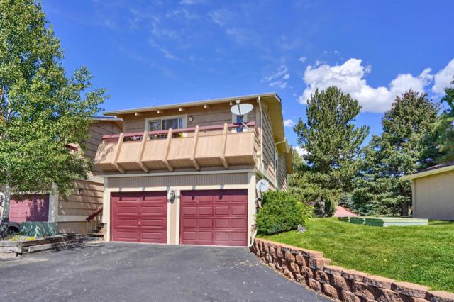 1675 Deer Creek Road, Monument, CO 80132 (#8957097) :: Wisdom Real Estate