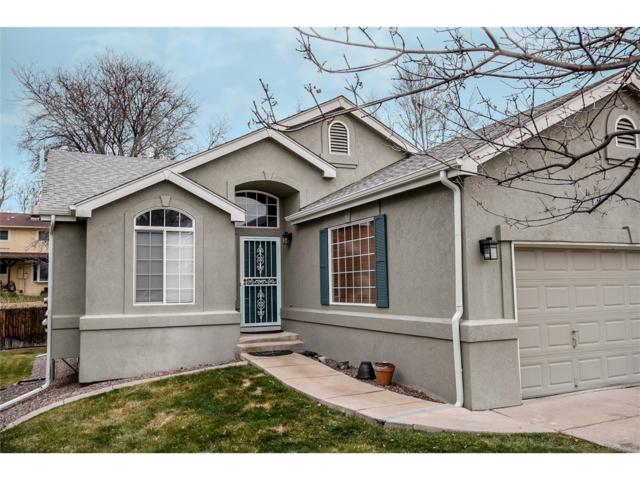 4905 S Newcombe Court, Littleton, CO 80127 (#8957707) :: My Home Team