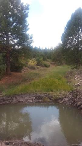 Tbd, Antonito, CO 81120 (MLS #8959898) :: 8z Real Estate