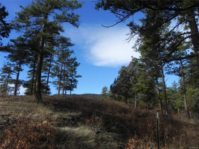 8275 Bannock Drive, Larkspur, CO 80118 (#8967256) :: Bring Home Denver