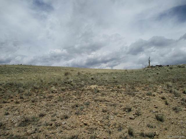 129 Ouray Trail, Como, CO 80432 (MLS #8970589) :: Stephanie Kolesar