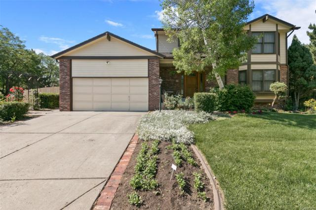 5852 W Pacific Circle, Lakewood, CO 80227 (#8973565) :: Structure CO Group