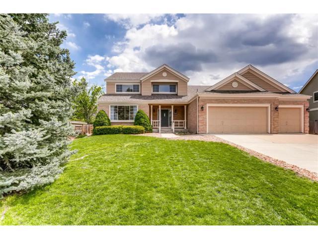 8278 W Chestnut Avenue, Littleton, CO 80128 (MLS #8973830) :: 8z Real Estate