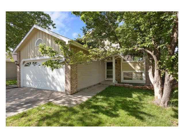 6704 Amherst Court, Highlands Ranch, CO 80130 (#8974444) :: The Peak Properties Group