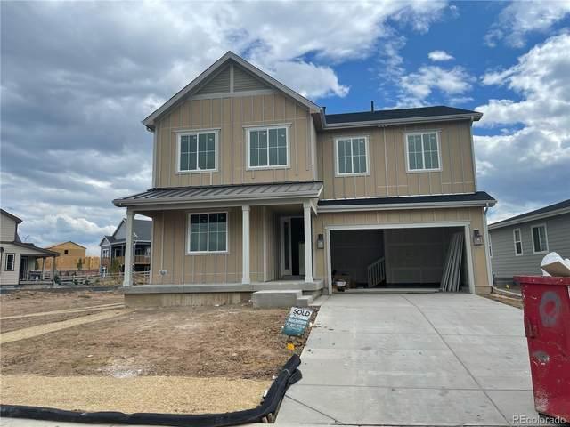 9154 Swan River Street, Littleton, CO 80125 (#8975451) :: Venterra Real Estate LLC